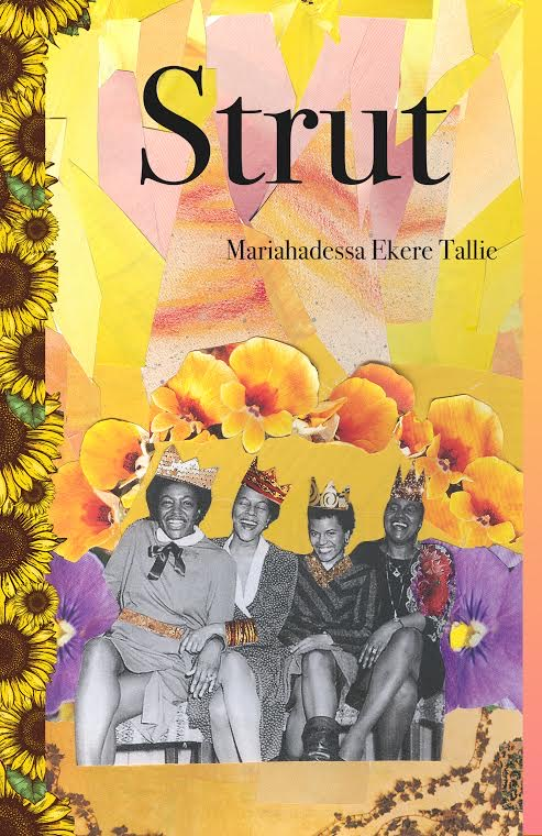 Strut - book cover